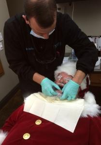 Santa getting his dental check up